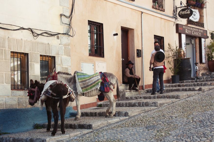 Granada - donkeys