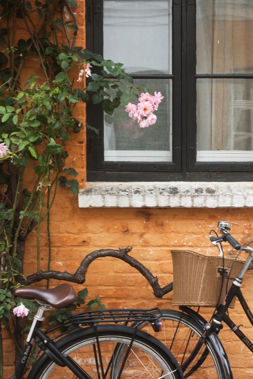 Copenhagen bikes, flowers and bricks