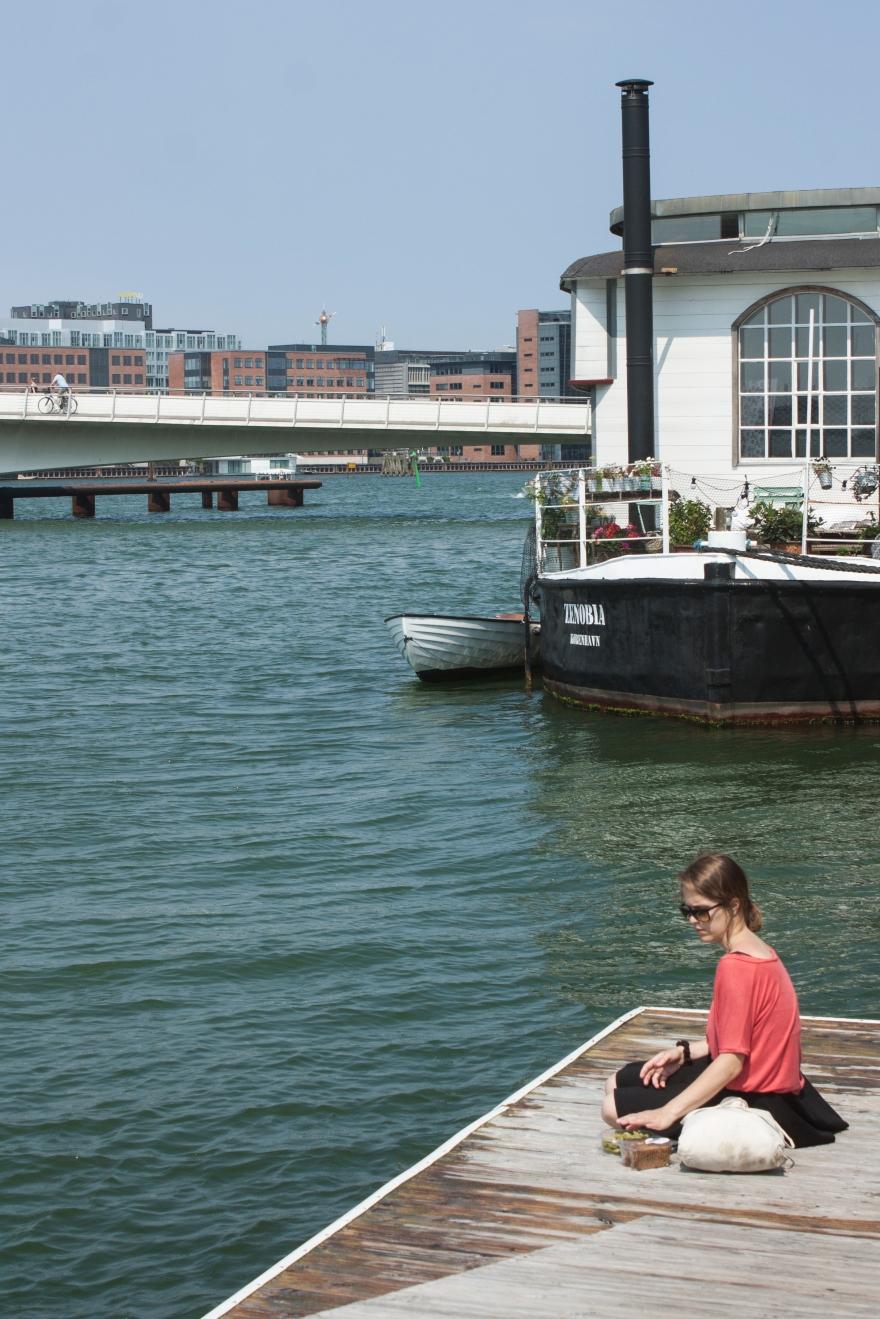 Copenhagen pique-nique