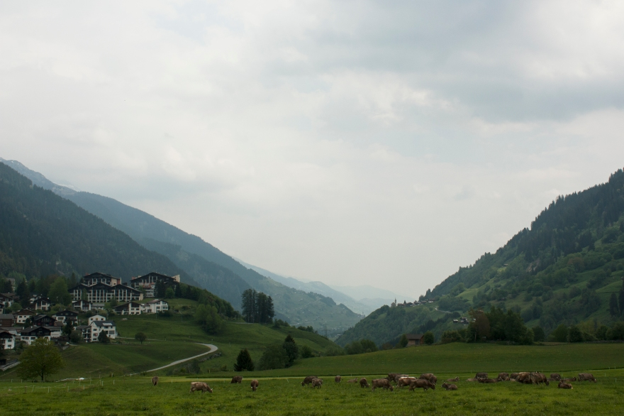 Suisse depth